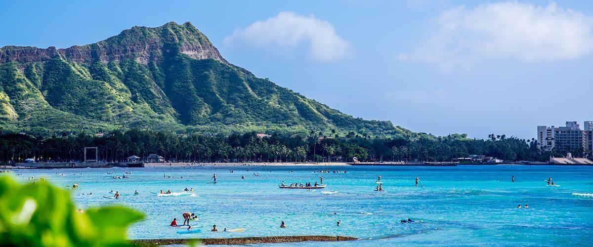 Hawaii Medical Marijuana Dispensaries Predict Strong Sales