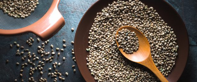hemp seed high nutritional value