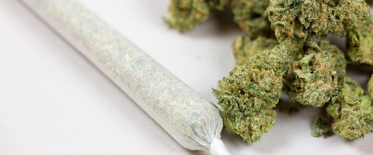 marijuana safe for you