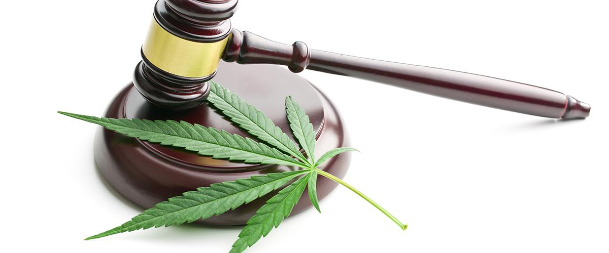 marijuana laws America