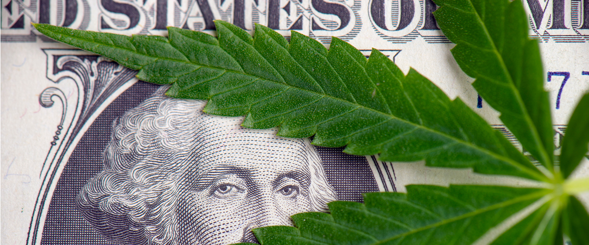 Banks for Marijuana Businesses