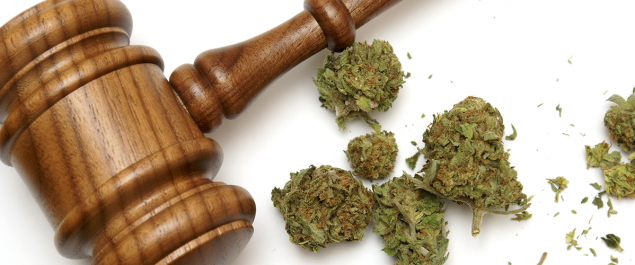 Federal Court Marijuana Ruling