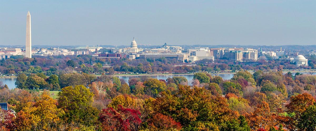 Washington DC Medical Marijuana Protections