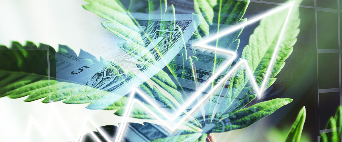10 Statistics You Probably Don't Know About Cannabis in 2020