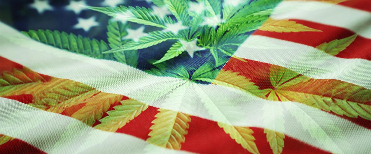 Federal Marijuana Legalization: When Will it Happen?