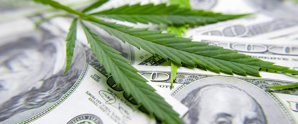 The Bounceback for Cannabis Businesses