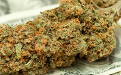 nevada cannabis-sales skyrocket set monthly record